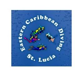 ecd-logo.591x297