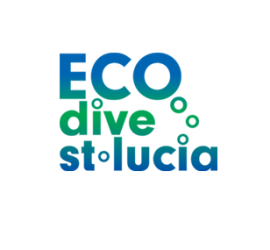 eco-dive-logo.591x297